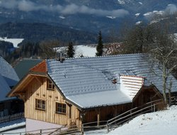 Pets-friendly hotels in Austria