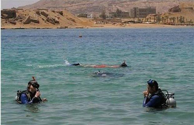 фото Beach Albatros Sharm El Sheikh 596677405