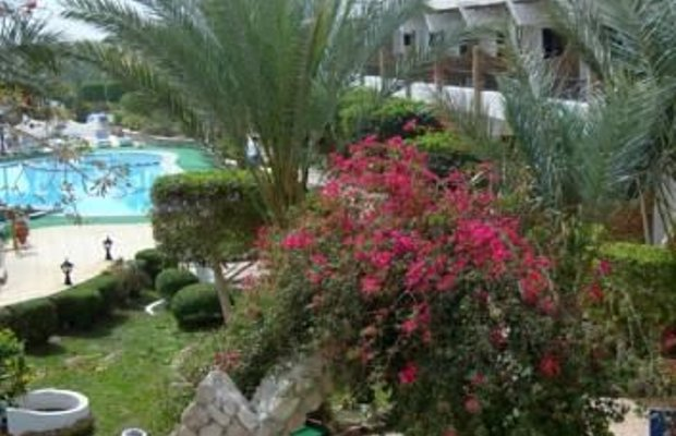 фото Turquoise Beach Hotel 596916743