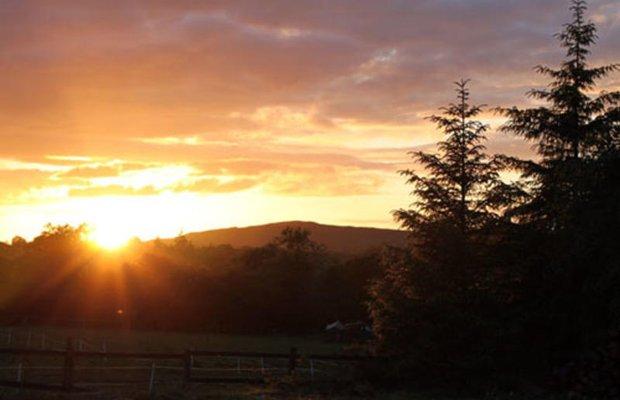 фото Finn Farm Hostel 603035675
