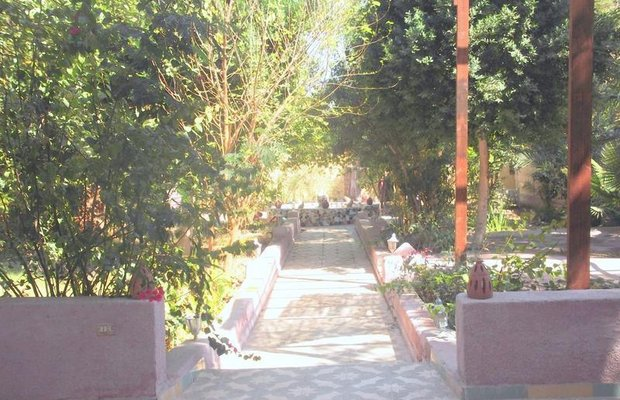 фото Nubian House 603229032