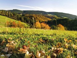 Schmallenberg hotels with restaurants