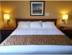 Pets-friendly hotels in Campbellton