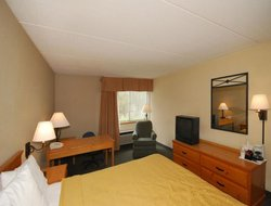 Pets-friendly hotels in Rhinelander