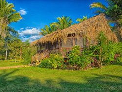 Pets-friendly hotels in Belize