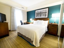 Pets-friendly hotels in Mississauga