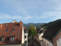 Pets-friendly hotels in Waldkirch
