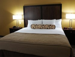 Pets-friendly hotels in Floresville