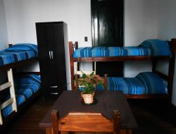 Pets-friendly hotels in Colonia Del Sacramento