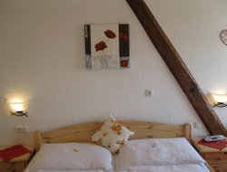 Pets-friendly hotels in Haslach