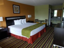 Pets-friendly hotels in Davenport