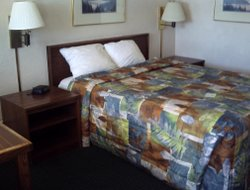 Pets-friendly hotels in Twin Falls