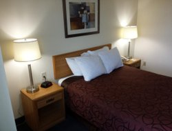 Pets-friendly hotels in Great Falls