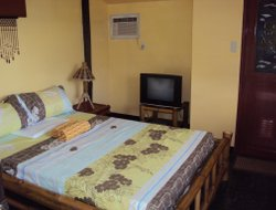 Pets-friendly hotels in Anda