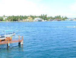 The most popular Bocas Del Toro hotels