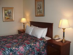 Pets-friendly hotels in Port Angeles