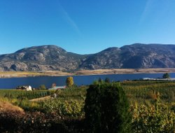 Osoyoos hotels with lake view