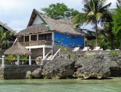 Pets-friendly hotels in Moalboal