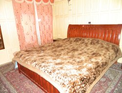 Srinagar hotels with lake view