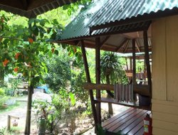 Pets-friendly hotels in Baan Tai