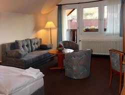 Pets-friendly hotels in Wolfshagen