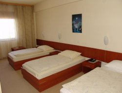 Pets-friendly hotels in Brod