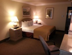 Pets-friendly hotels in Vacaville