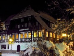 Gutach im Breisgau hotels with restaurants