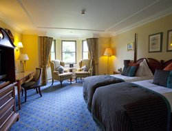 Pets-friendly hotels in Windsor