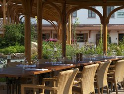 Pets-friendly hotels in Pruhonice
