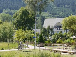 Pets-friendly hotels in Saalhausen