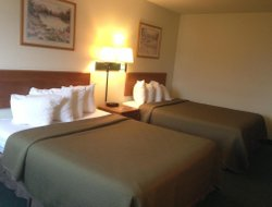 Pets-friendly hotels in Morton