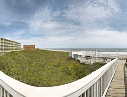 Pets-friendly hotels in Kill Devil Hills