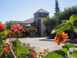 Pets-friendly hotels in West Sacramento