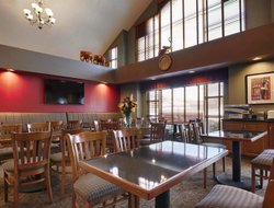 Pets-friendly hotels in Tuscaloosa
