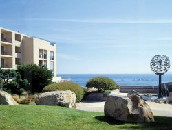 Pets-friendly hotels in Monterey