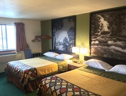 Pets-friendly hotels in Buffalo