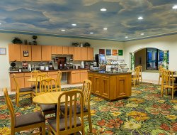 Pets-friendly hotels in Seabrook