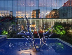 Pets-friendly hotels in Shanghai