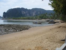 Pets-friendly hotels in Krabi City