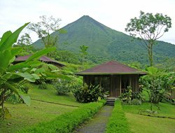 Pets-friendly hotels in La Fortuna