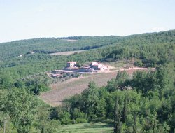 Gaiole in Chianti hotels with restaurants