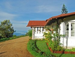 Top-10 hotels in the center of Munnar