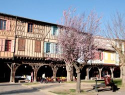 Pets-friendly hotels in Mirepoix