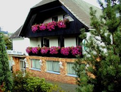 Pets-friendly hotels in Bad Berleburg