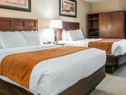 Pets-friendly hotels in Traverse City