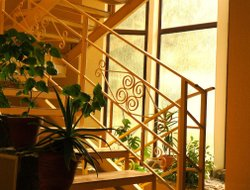 Pets-friendly hotels in Bishkek