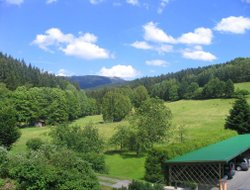 Pets-friendly hotels in Lohbergerhutte
