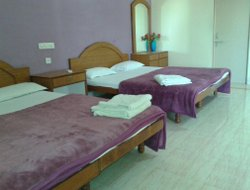 Pets-friendly hotels in Diu