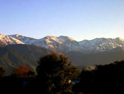 Pets-friendly hotels in Kaikoura